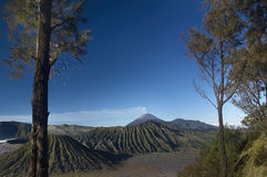 Halny bromo wulkan Java Indonesia zdjęcia royalty free