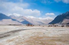Halny i mały pustynny widok w Leh, India Obraz Stock