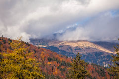 Halny jesień krajobraz z kolorowym lasem Zdjęcia Royalty Free