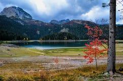 Halny jezioro Zdjęcie Stock