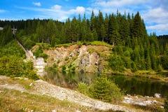 Halny jezioro i las Zdjęcie Royalty Free