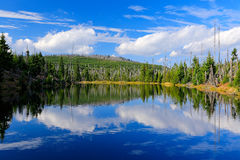 Halny jezioro podczas letniego dnia, zdewastowany lasowy Bawarski Lasowy park narodowy Piękny krajobraz z niebieskim niebem i chm Fotografia Stock