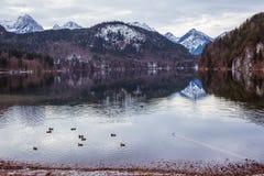 Halny jezioro w zimie Zdjęcie Royalty Free