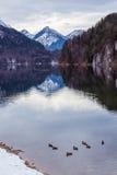 Halny jezioro w zimie Obraz Stock