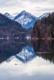 Halny jezioro w zimie Obrazy Royalty Free
