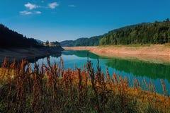 Halny jezioro z kontrastującymi pomarańczowymi roślinami obraz stock