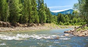 Halny krajobraz na pogodnym letnim dniu z rzeką Zdjęcie Royalty Free