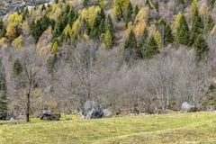 Halny krajobraz w pogodnym jesiennym dniu Zdjęcia Stock