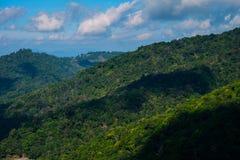 Halny lasowy szczwany lanscape Fotografia Royalty Free