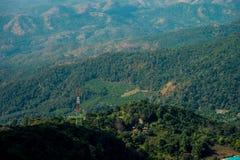 Halny lasowy szczwany lanscape Fotografia Stock