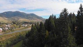 Halny lasu krajobraz Mknący drzewa od quadrocopter Piękny Halny las zdjęcie wideo