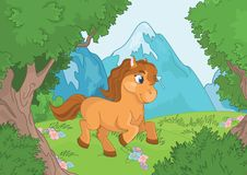 Halny lasu krajobraz z koniem Fotografia Stock