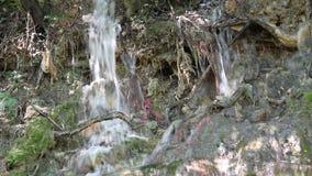 Halny mały strumień zbiory wideo