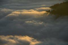 Halny morze chmury Obrazy Stock
