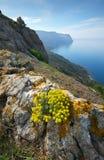 Halny morze krajobraz Zdjęcie Royalty Free