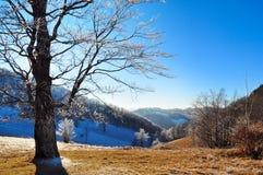 Halny mroźny lanscape, zimy scena Zdjęcie Royalty Free