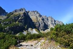 Halny natury niebieskiego nieba zieleni parka drewno chmurnieje jeziorny refleksowy ładnego Obraz Royalty Free