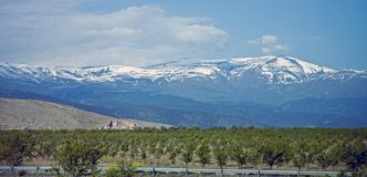 halny Nevada pasma sierra obraz stock