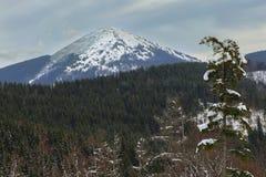 Halny śnieg Krajobraz góra Zima Obraz Royalty Free
