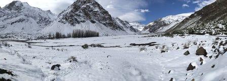 Halny śnieg n Chile i krajobraz Obraz Stock