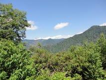 Halny Odgórny widok w Appalachian górach TN zdjęcie royalty free