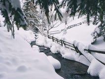 Halny opadu śniegu landskape Zdjęcia Stock