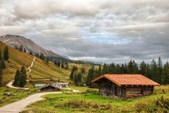 Halny paśnik przy morzem królewiątka w Berchtesgaden Fotografia Royalty Free