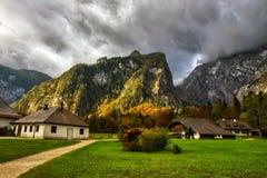 Halny paśnik przy morzem królewiątka w Berchtesgaden Zdjęcia Royalty Free