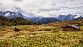 Halny paśnik przy morzem królewiątka w Berchtesgaden Fotografia Stock