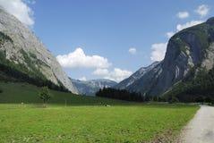 halny paśnik Tirol Fotografia Stock