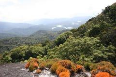 halny panoramiczny widok Zdjęcia Royalty Free