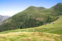Halny plateau Zdjęcia Royalty Free