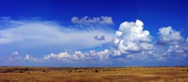 halny plateau lato widok zdjęcia royalty free