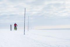 Halny rowerzysta zdjęcie royalty free