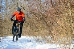 Halny rowerzysta jazdy rower na Śnieżnym śladzie w Pięknym zima lesie zdjęcie stock