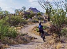 Halny rowerzysta na Latigo śladzie W Scottsdale, AZ obraz royalty free
