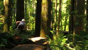 Halny rowerzysta w lesie zbiory wideo