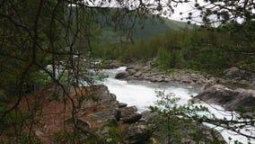 Halny rzeczny dolina krajobraz zdjęcie wideo