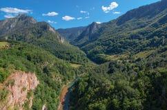 Halny rzeczny Tara i las w Montenegro Obrazy Royalty Free