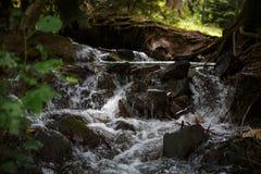 Halny rzeka przepływ w górach Gruzja obrazy stock