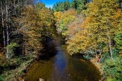 Halny rzeki i spadku ulistnienie w Appalachians western N zdjęcie royalty free