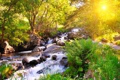 Halny rzeki, lasowego i jaskrawego słońce, Obrazy Royalty Free