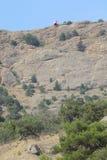 Halny sceneria krajobraz Zdjęcia Royalty Free