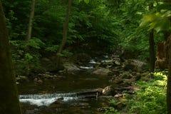halny strumień Zdjęcie Stock