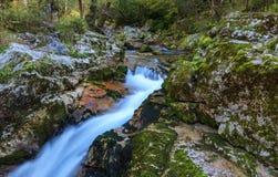 Halny strumień w Lepena dolinie zdjęcia stock