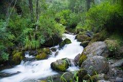 Halny strumień. Rzeka Mleko Zdjęcia Stock