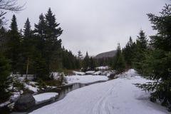 Halny strumień w Adrinondack pustkowiu obrazy royalty free