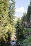 Halny strumienia spływanie wśród stromych skłonów Rhodope góry Zdjęcie Stock