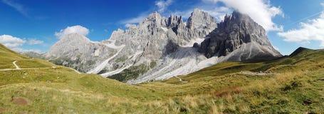 Halny trawa szczyt w Trentino alcie Adige Zdjęcia Royalty Free