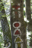 Halny trekking znak Obraz Royalty Free